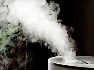Humidificateur domestique à vapeur