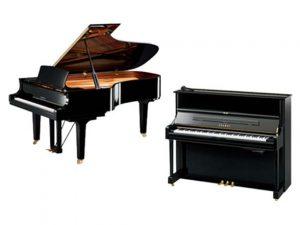 Pianos neufs droits ou à queue de grandes marques